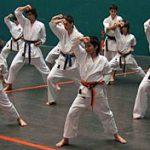 Karate: Álava gana el Campeonato de Euskadi