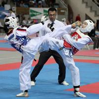 Taekwondo – Diez medallas vascas en Tarragona