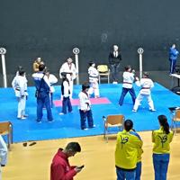 Taekwondo – Éxito del Campeonato de Técnica y Jornada de Deporte Escolar en Bilbao